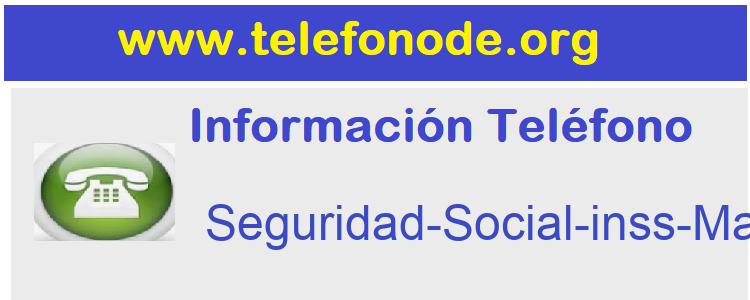Telefono  Seguridad-Social-inss-Madrid