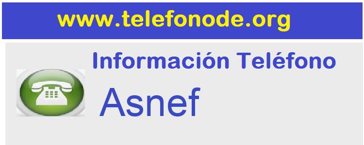 Telefono  Asnef
