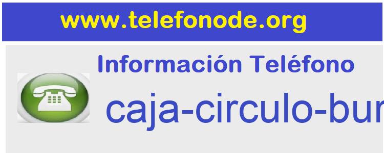 Telefono  caja-circulo-buros